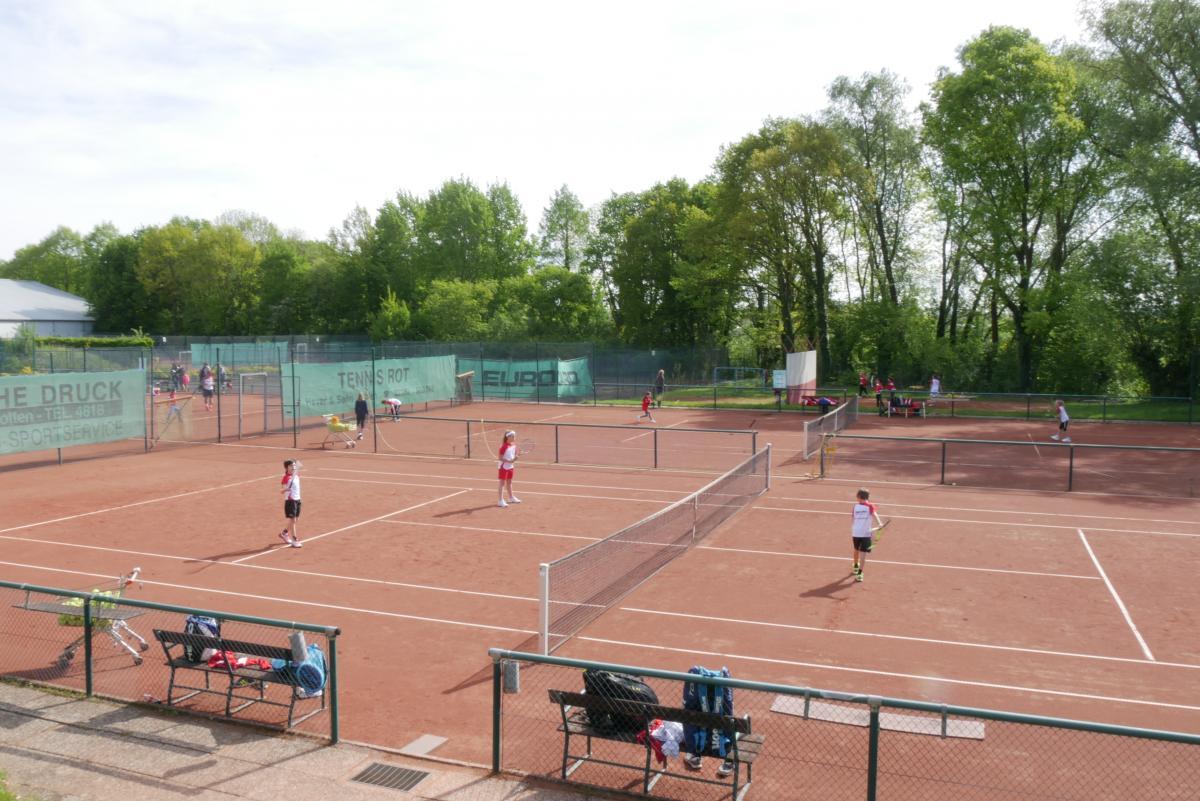 Tennis Salzkotten